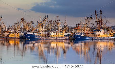 Fishery In Lauwersoog Harbor