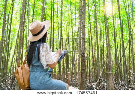 Lady travel Ecotourism Write down the information notebook in the wood Golden Meadow Prong thailand, Ecology concept Human hands holding big plant tree with on blurred sunset background