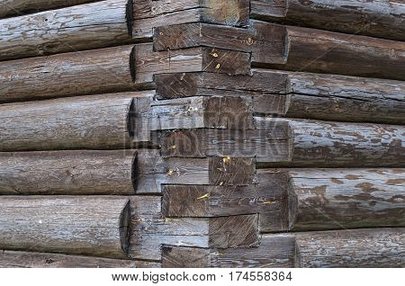 Joints of natural wooden logs wall corner of log house
