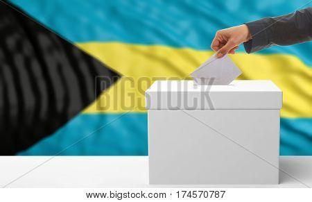 Voter On A Bahamas Flag Background. 3D Illustration