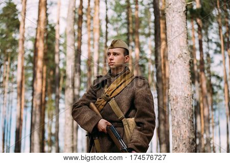 Pribor, Belarus - April 23, 2016: Re-enactor Dressed As Russian Soviet Infantry Soldier Of World War II With Rifle Weapon In Autumn Spring Forest