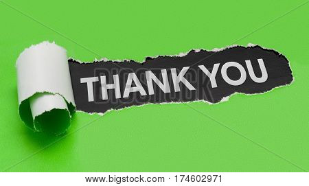 Torn Green Paper Revealing The Word Thank You