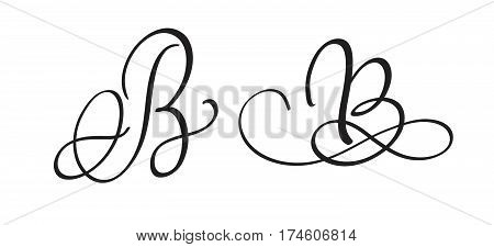 art calligraphy letter B with flourish of vintage decorative whorls. Vector illustration EPS10.