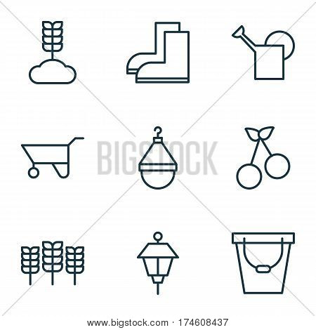 Set Of 9 Plant Icons. Includes Sweet Berry, Hanger, Cereal And Other Symbols. Beautiful Design Elements.
