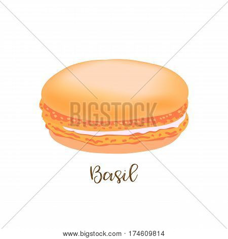 Basil french macaroon isolated on white background. Can be used for banner, flyer, menu, wrapping paper. Vector art image illustration.