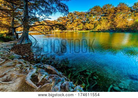 Canoes And Fall Foliage On The Crystal Clear Frio River In Texas.