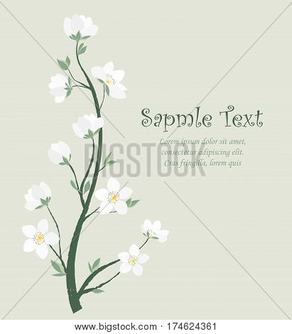 Vector illustration of decorative branches with flowers. Spring blossom