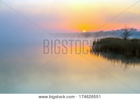 Idyllic View of Morning Fog over Lake and rising Sun lonely Tree staying on Coast