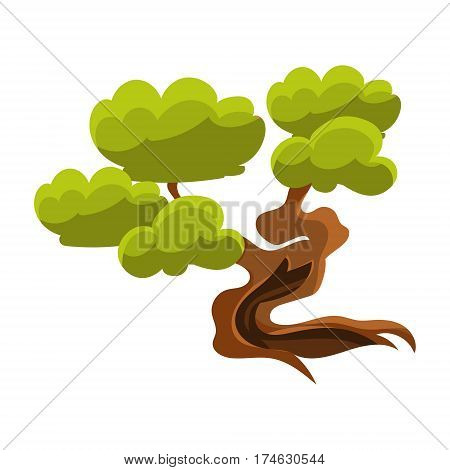 Green Old Tree Bonsai Miniature Traditional Japanese Garden Landscape Element Vector Illustration. Japan Culture Mini Plant Growing Art Isolated Landscaping Item