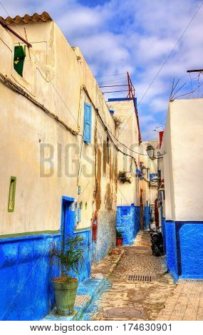 Famous blue and white houses at the Kasbah of the Udayas in Rabat, a UNESCO heritage site in Morocco