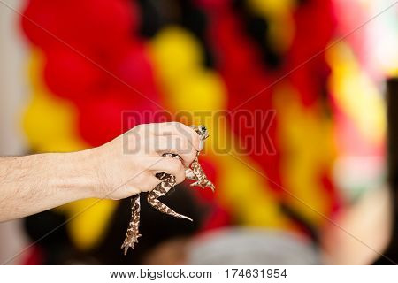 Caucasian hand holds frog with yellow and red flag behind