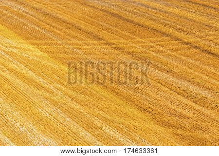 Top view of the ground surface with yellow harvested field