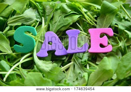 word sale on a  abstract green background