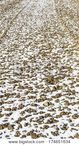 Melting snow in a plowed field in winter