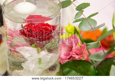 red rose in water closeup. drink of rose petal flower on blue wooden background, infusioned water