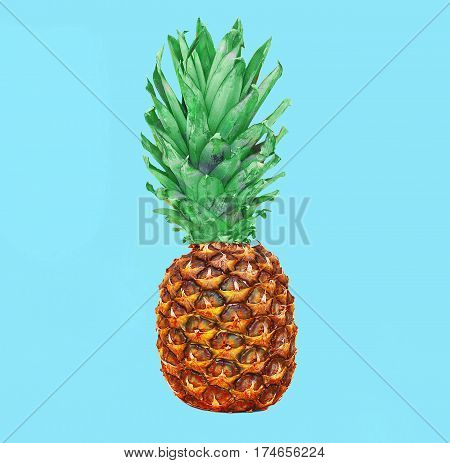Pineapple Fruit On Colorful Blue Background, Ananas Photo