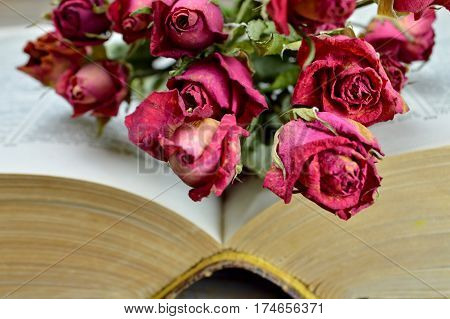 Open old book and bunch of wilted roses