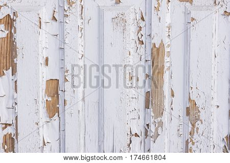 Old shabby wooden door on the street close up and white shabby background