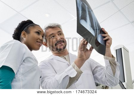 Radiologists Analyzing Chest X-ray In Examination Room