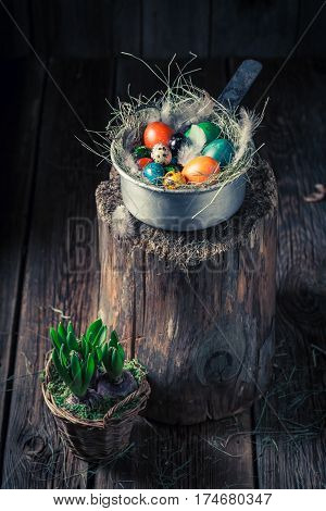 Ecological Eggs For Easter In The Rustic Cottage