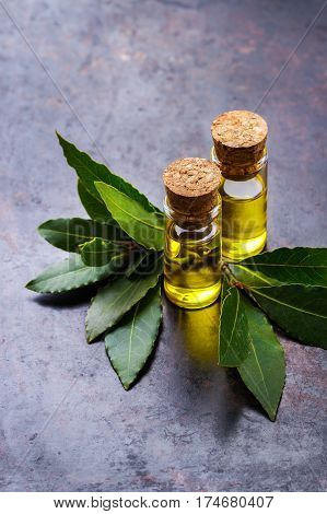 Healthy lifestyle concept. Natural bay laurel essential oil, essence in glass bottle with leaves on a rusty black table for beauty, spa, therapy. Copy space background