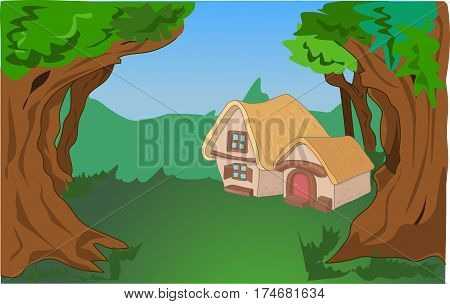 house in forest surrounded by large centenary trees