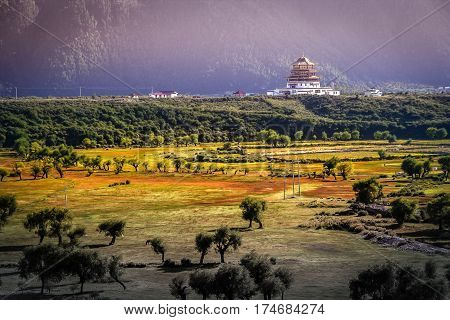 Chinese pagoda on a vast meadow in Tibet, close to Yunnan province in China