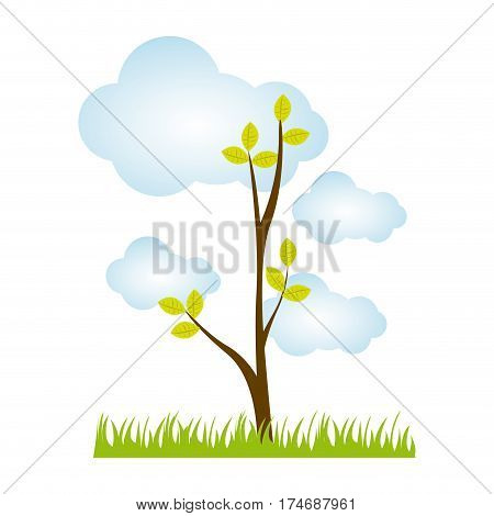 colorful landscape with tree in pasture and cloud cumulus design vector illustration