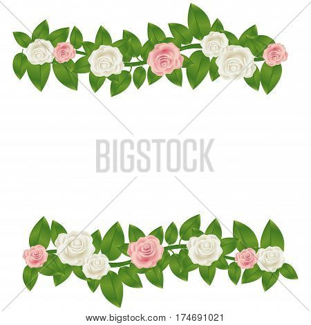 colorful border crown of leaves with roses floral design vector illustration