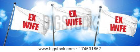 ex wife, 3D rendering, triple flags