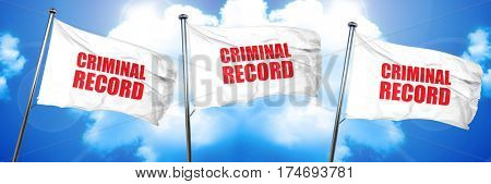 criminal record, 3D rendering, triple flags