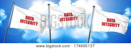 data integrity, 3D rendering, triple flags
