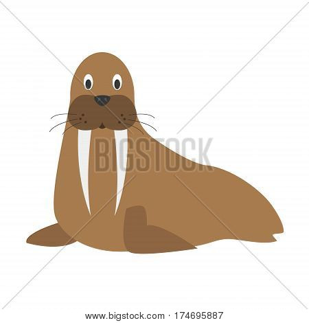 Cute walrus in cartoon style vector illustration