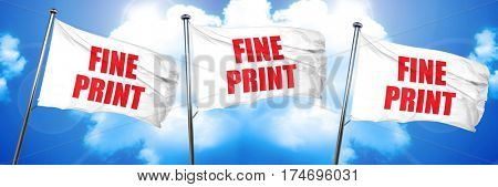 fine print, 3D rendering, triple flags