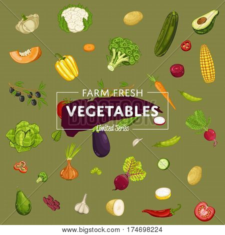 Farm fresh vegetable banner vector illustration. Natural growing, organic farming retail, vegan product store poster. Healthy food advertising with pepper, radish, cabbage, carrot, eggplant, garlic