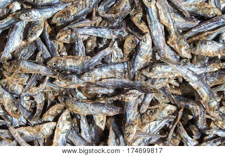 Small dried fishes on market table for sell. Sea mackerel on display. Sea food ingredient. Grey and silver fishes from fisherman's catch. Healthy seaside food ready for cook. Dried mackerel closeup