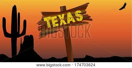 A Texan desert sunset scene with cactus