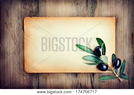 Olive on piece of old paper over Wood Background. Olive branch on old olive tree close up. Fresh and Healthy organic olive fruits design with copy space for your text