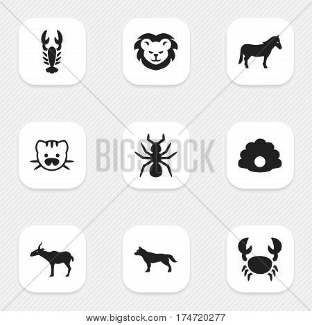 Set Of 9 Editable Nature Icons. Includes Symbols Such As Dog, Beast, Stallion And More. Can Be Used For Web, Mobile, UI And Infographic Design.