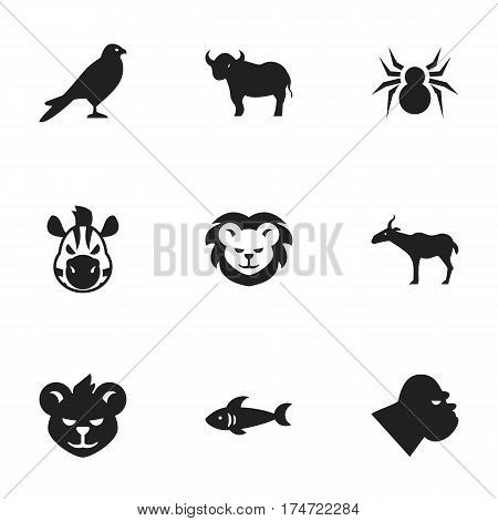 Set Of 9 Editable Nature Icons. Includes Symbols Such As Arachind, Eagle, Horse And More. Can Be Used For Web, Mobile, UI And Infographic Design.