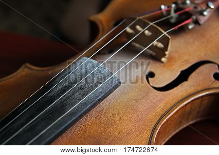 Vintage violin over dark background. Detail of violin