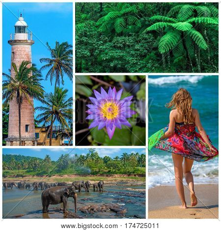 Pictures set consisting of nine beautiful photoes about Sri Lanka