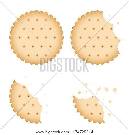 Bitten chip biscuit cookie, cracker vector set. Baked biscuit on white background, illustration of bitten biscuit