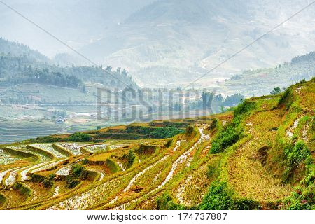 View Of Rice Terraces Filled With Water At Highlands