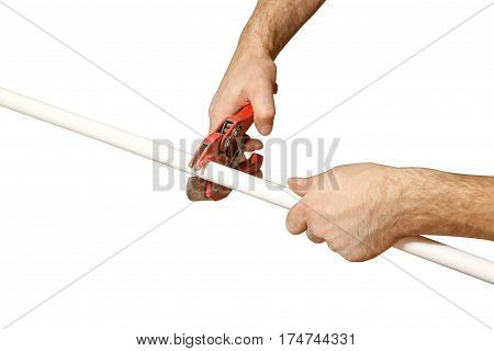 Hands Worker Cuts Off A Piece Of Polypropylene Pipes. Isolated On White Background.