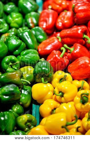 Ripe Yellow, Red and Green Peppers in Vegetables Market.