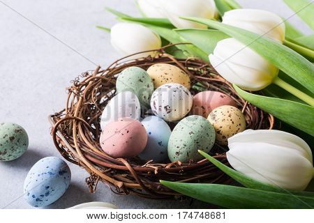 Beautiful white tulips with colorful quail eegs in nest on light gray stone background. Spring and Easter holiday concept.