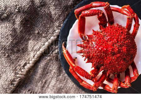 Shellfish plate of crustacean seafood with fresh red crab lobster on vintage background