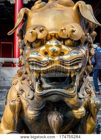 Beijing, China - Oct 30, 2016: Gilded bronze lion outside the Gate of Heavenly Purity, or Celestial Purity (Qianqingmen). Forbidden City (Gu Gong, Palace Museum).