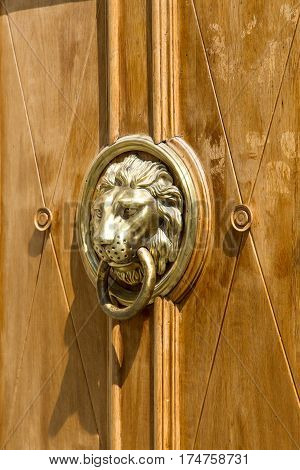 cast brass lion door knob on a wooden door